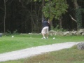 Golf Tournament 2010 020.JPG