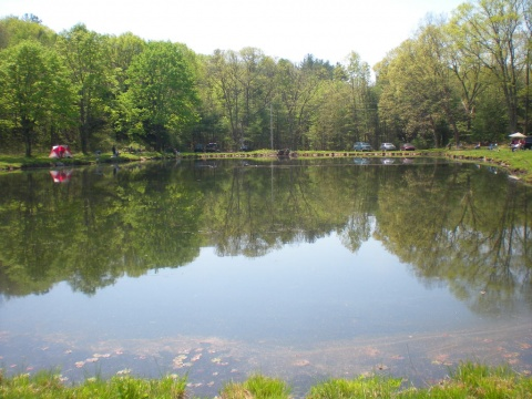 MFG Fishing Pond